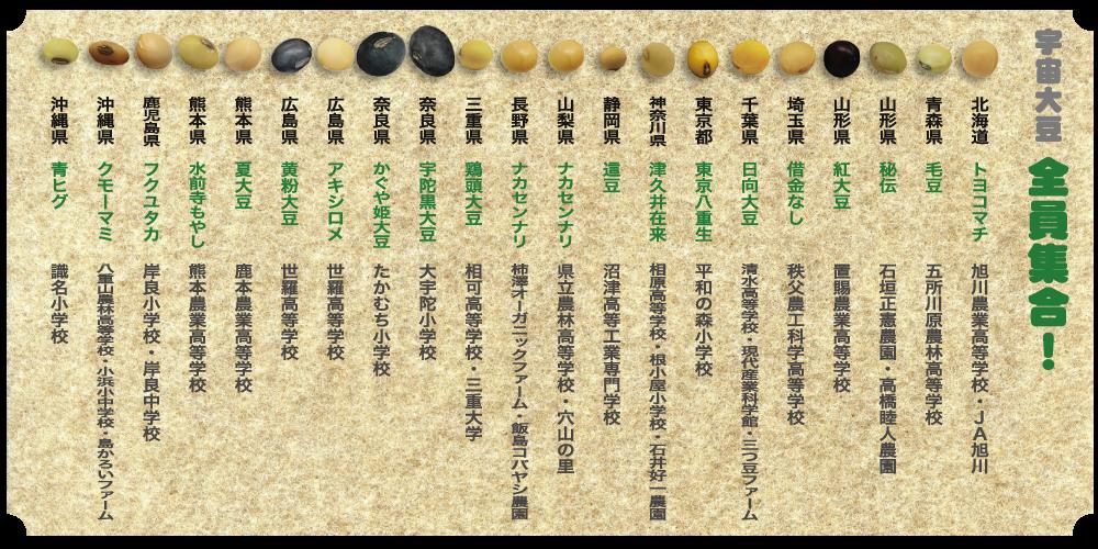 daizu-zu